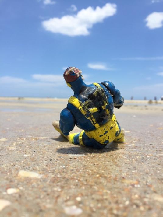 BeachBud