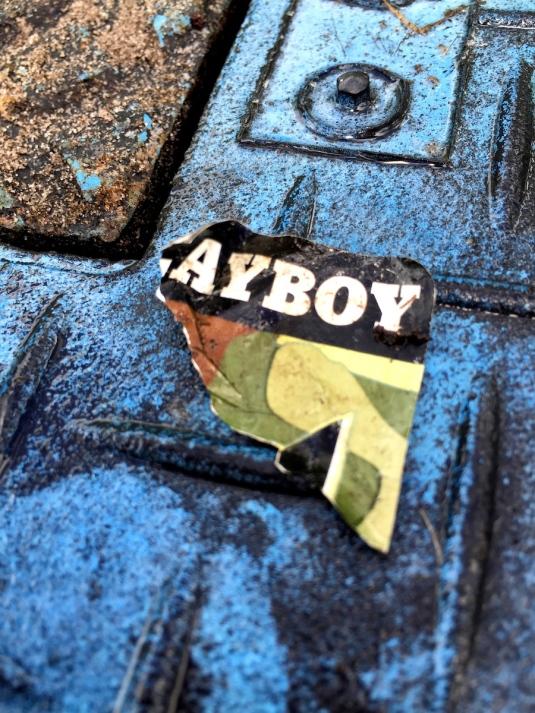 AyBoy